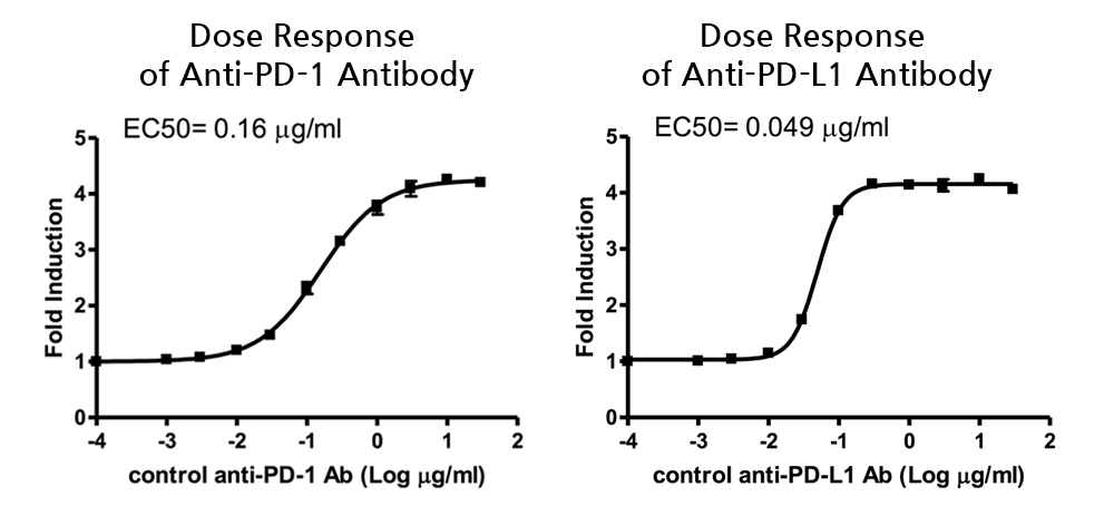PD-1 PD-L1 Antibody Dose Response