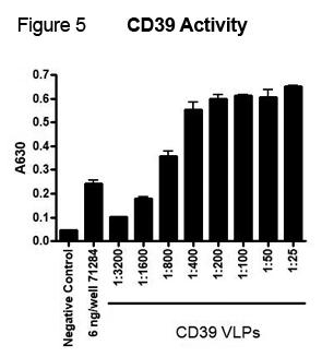 CD39 Activity VLP