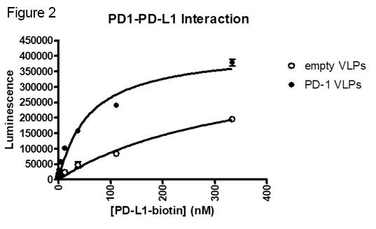 PD-1 PD-L1 VLP