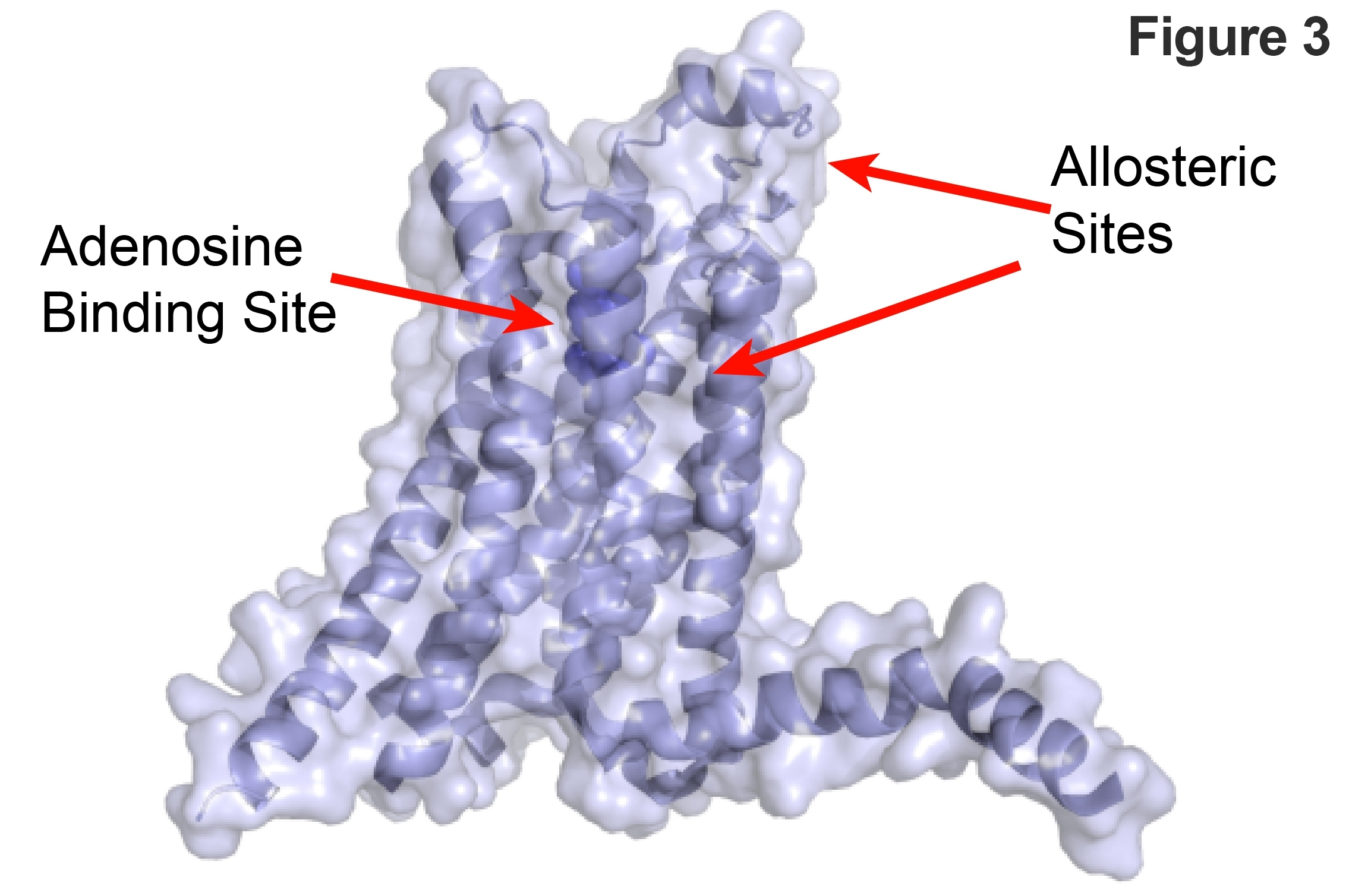 A2AR Structure