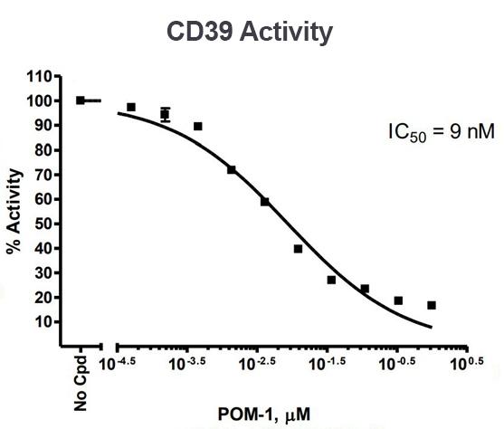 CD39 IC50 Activity