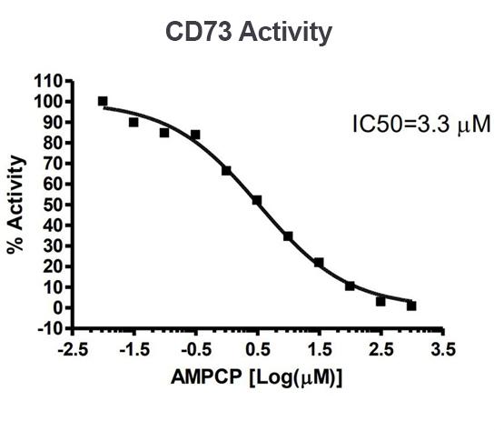CD73 IC50 Activity