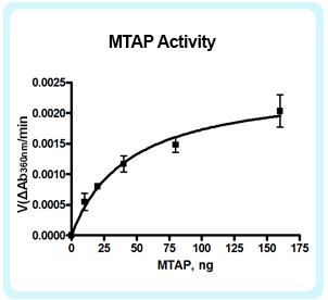 MTAP Activity
