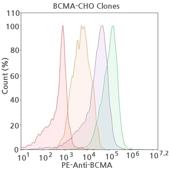 BCMA FACS Data