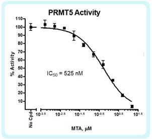 PRMT5 MTA Activity